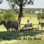 retirement_fs