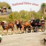National Drive 2010