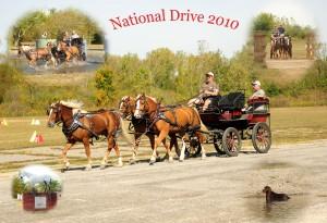 National Drive 2010